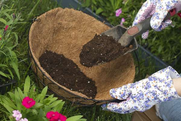 Best Compost Types, Planting Hanging Baskets